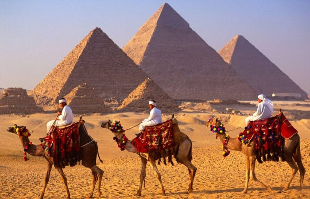 Giza Camel Ride